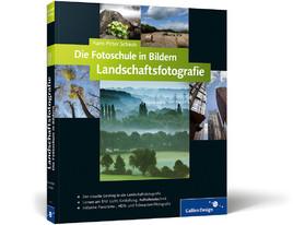 Buch Schaub