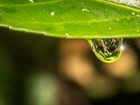 Wasser_01